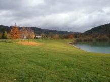 Fotogalerie Přírodní koupaliště Na Stanoch -