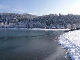 Přírodní koupaliště Na Stanoch -
